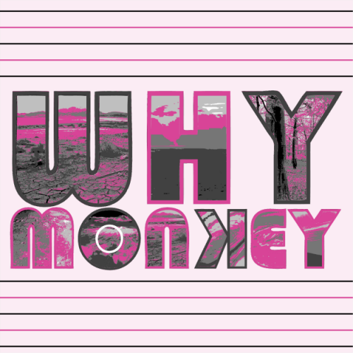 Why Monkey